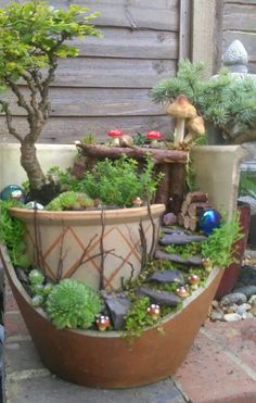 Fairy garden Miniature garden Random Drug Testing in our Schools Drug use amongst young people is an Broken Pot Garden, Fairy Garden Pots, Indoor Fairy Gardens, Garden Terrarium, Fairy Garden Houses, Miniature Fairy Gardens, Garden Art, Dish Garden, Garden Crafts