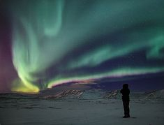 I've seen the Northern Lights...but not like this :)