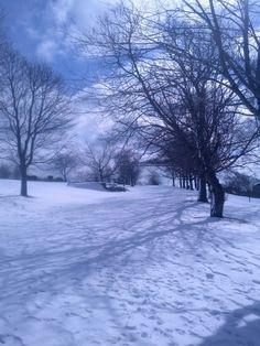 Commons in the Winter. Dartmouth Nova Scotia, East Coast, Canada, Winter, Outdoor, Outdoors, Outdoor Games, Outdoor Life
