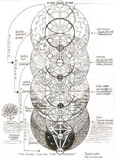 The Tree of Life, also called Jacob's Ladder. This is a Kabbalistic image but interestingly, the spheres in the tree overlay the flower of life 'sacred' geometric form and therefore represents a Primal Pattern of Nature