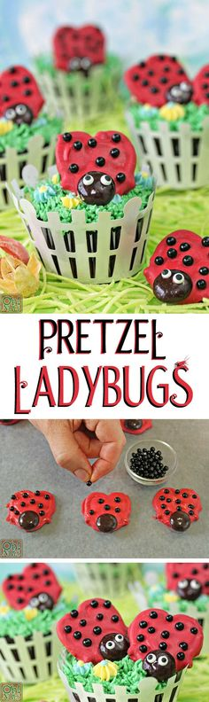 Pretzel Ladybugs - so cute, so easy, and perfect for picnics and parties! | From ohnuts.com/blog