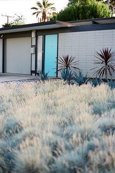 Eichler home - Orange California... Love the grasses