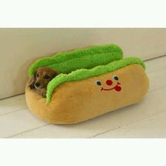 A weiner dog in a weiner bed.