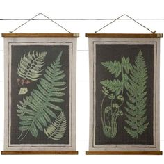 Our Scroll Canvas Fern Wall Art, Set of is lovely nature-inspired wall decor. Visit Antique Farmhouse for more fern frond decor! Wall Decor Set, Wall Art Sets, Art Decor, Decor Ideas, Art Ideas, Decorating Ideas, Room Decor, Antique Farmhouse, Or Antique