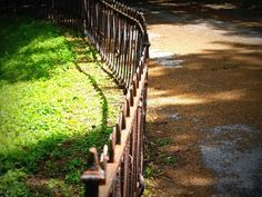 March 30 – The Grass Is Always Browner on the Other Side of the Fence Day