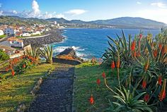Fancy an island holiday in the amazing Azores? From whale watching to where to find the best local tapas: here's our guide to the best things to see and do in Portugal's Ponta Delgada.