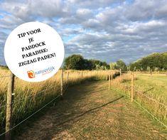 Horse Paddock, Horse Stables, Dream Stables, Horse Training, Country Life, Farm Animals, Habitats, Paradise, Barn