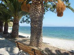 Daskalopetra Beach Chios Greece, Greek Islands, Unique, Beach, Plants, Beautiful, Greece, Island, Greek Isles