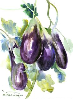 Eggplants Painting original watercolor 12 x 9 in by ORIGINALONLY