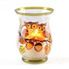 Fall Owl Hurricane Glass