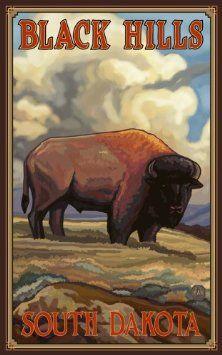 "Amazon.com: Northwest Art Mall 11"" x 17"" Poster Black Hills Buffalo by Paul A. Lanquist: Home & Kitchen"