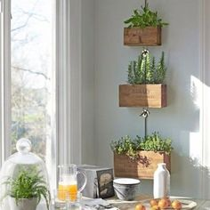 Rustic-Farmhouse-Wooden Herb Boxes-Hanging Planters-Reclaimed Wood-Rustic Decor-Country Kitchen-Rustic Planters-Kitchen Decor-Set of 4 Herb Planter Box, Wooden Planter Boxes, Herb Planters, Indoor Planters, Succulent Pots, Hanging Planters, Indoor Herbs, Hanging Herbs, Wall Planters