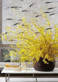 Centerpieces for your Home | Forsythia Arrangement