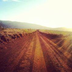 Lahaina Historic Trail