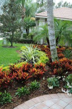 Brilliant Ideas Landscaping Front Yard Layout Landscaping Front Yard Layout Curb Appeal In Boca Raton Landscape Design Tropical Tropical Backyard Landscaping, Florida Landscaping, Florida Gardening, Landscaping Tips, Front Yard Landscaping, Landscaping Software, Acreage Landscaping, Design Tropical, Landscape Curbing
