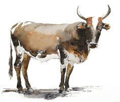 Nguni Watercolour, 27x23 Watercolours, Watercolor Paintings, Moose Art, Wildlife, African, Birds, Animals, Animales, Water Colors