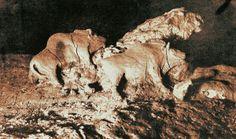Los bisontes de arcilla de la cueva de Tuc d'Audoubert, fotografía de 1915