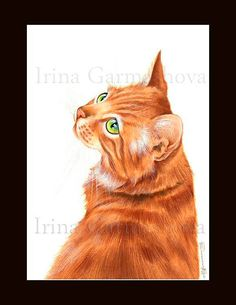 Ginger Cat Print Glance Back by Irina Garmashova