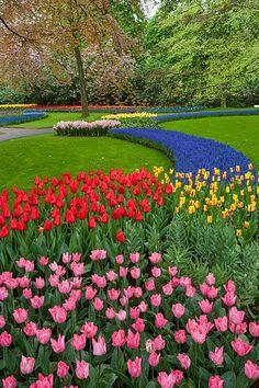 Keukenhof Gardens, Amsterdam, Netherlands