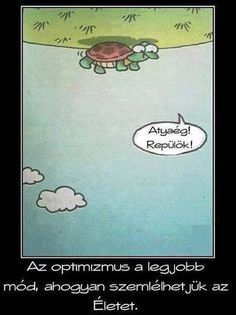 www.lotusz.cafeblog.hu #optimizmus #bölcs #siker