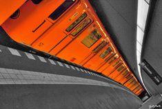selective colour photography