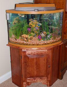 Corner aquarium stand