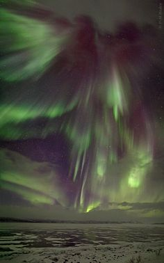Spectacular display of Aurora Borealis (Northern Lights) | Abisko National Park in Lapland, Sweden.