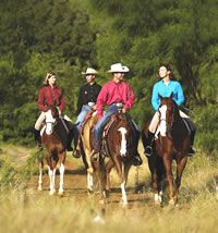 Don't go out on the trail without these essentials Trail Riding Horses, Riding Holiday, Horse Therapy, Horse Camp, Western Riding, Horses And Dogs, Horse Trailers, Horse Training, Horse Love