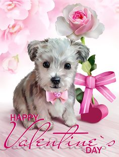 Valentine's Dog by Kajenna Happy Valentines Day Pictures, Quotes Valentines Day, Valentines Day Drawing, My Funny Valentine, Valentine's Day Quotes, Puppy Pictures, Cute Pictures, Shapes Images, Gifs
