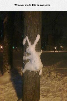Schnee in Deutschland Schnee In Deutschland, Snow Sculptures, Photo Images, Snow Art, Snow Bunnies, Bugs Bunny, Bunny Art, Winter Fun, Winter Snow