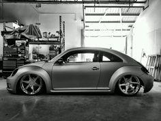 New beetle.