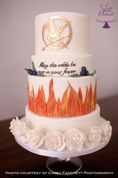 Hunger Games cake (?)