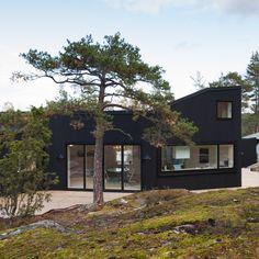 Vila Blåbär uprostred borovicového lesa – Moderné drevostavby