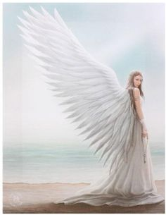 A beautiful angel standing by the shore design wall canvas, designed by the brilliant Anne Stokes. Small x x Anne Stokes, Buy Canvas, Wall Canvas, Canvas Pictures, Print Pictures, Wall Art Prints, Canvas Prints, Gothic Vampire, Beach Design