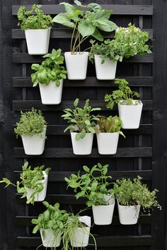 Gartenarbeit modern vertical garden IKEA hack Lawn Mower Parts Things To Know Before Buying Lawn Mow Garden Wall Designs, Vertical Garden Design, Vertical Gardens, Balcony Herb Gardens, Balcony Gardening, Balcony Plants, Apartment Herb Gardens, Vertical Garden Plants, Vertical Planting