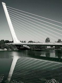 Alamillo Bridge, Sevilla, Spain  Gorgeous