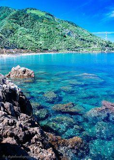 Scilla in Velvia, Calabria, Italia