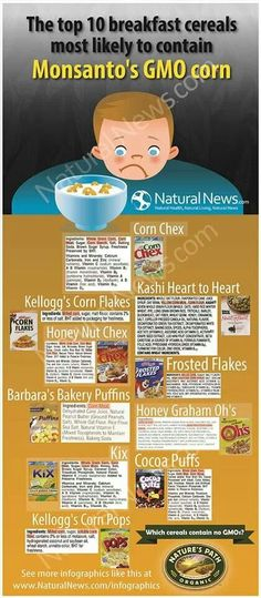 GMO in your Cereal