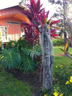 """Merland"" Vacation/Retreat House  - vacation rental in Pähoa, Hawaii. View more: #PhoaHawaiiVacationRentals"