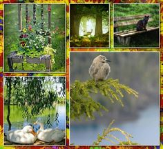 . Forest Flowers, Country Farm, Mood Boards, Color Combos, Animals And Pets, Scenery, Moody Blues, Colours, Collagen