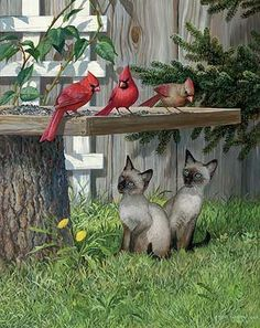 A925064026:Board Meeting-Cats Painting by P. Weirs