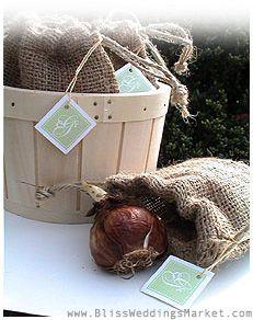 Forced Bulbs in Burlap Bags make creative Winter Wedding Favors!