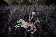 7 Cavalos de Ulrika Kestere | Flores e Corações