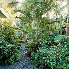 5. Go (Almost) Overboard With Green<br /> - 10 Ways to Create a Backyard…