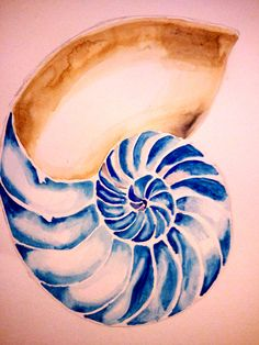 Nautilus 1Watercolor  We change, we transform, and we renew ourselves over timejust like the Nautilus shell that grows new chambers.