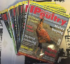 Practical Poultry Magazine-Chicken-Ducks-Game-Goose-Quail-Rabbits-#70 to 81 2010 Pet Supplies:Poultry & Waterfowl #forcharity