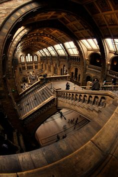 Props for this photo of the Natural History Museum in London. They used a wide lens to give it this Hogwarts-type look!
