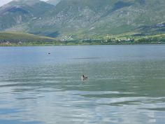 Lake Pamvotida - Ioannina, Greece