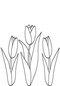 Tulip Flower Garden Coloring Pages for Kids