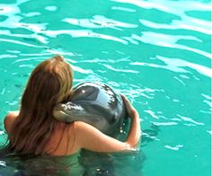 I swam with the dolphins once. Wish I had a pic like this. Dolphins are my favorite.